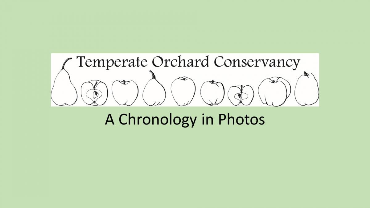 A Chronology in Photos